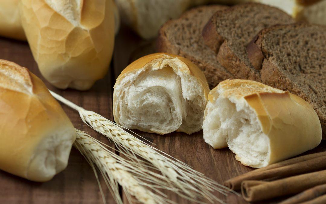 Pan blanco o pan integral ¿Cuál debemos consumir?